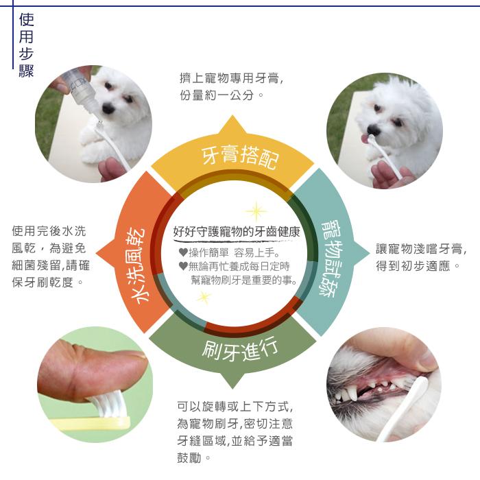 日本Mind Up貓用迷你牙刷 適合幼、小型貓