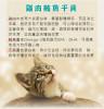 台灣製 CatPool 貓侍 低敏食材天然貓用主食罐 80g 貓罐頭 純雞肉牛肉旗魚藍莓鮪魚干貝