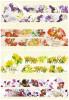 【花言葉】戰國BASARA手繪印象紙膠帶