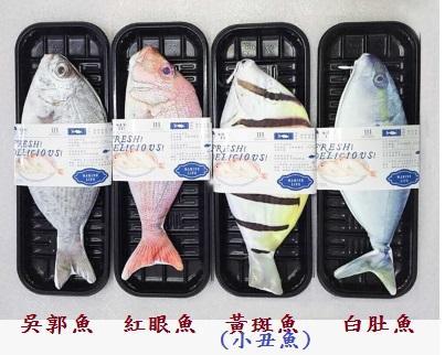 仿真魚 魚筆袋 小丑魚